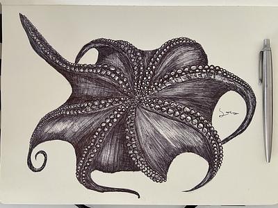 Ballpen Octopus 🐙 blackandwhite sketch design illustration ballpen ball
