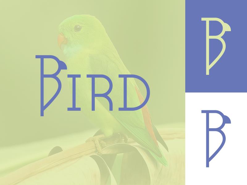 Bird Logo Concept b letter b identity brand inspiration concept design logo typogaphy bird logo bird