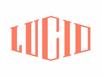 (Almost)Final Lucid Logotype logo logotype lucid design custom typography