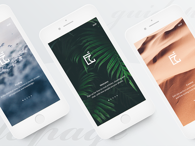 #2 Gamma-Guide Page ux ui white simple photography mobile minimalism clean ios