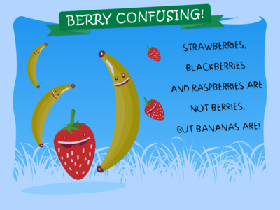 BERRY CONFUSING
