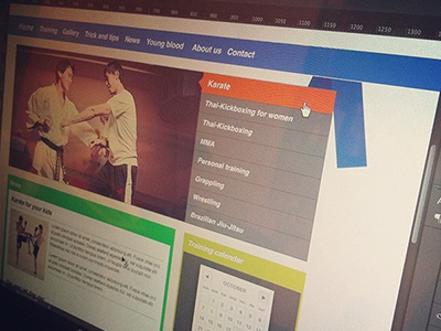 Nenad ivanovic   karate web design