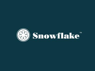 Snowflake Logo snowflake snow white clean logo blue