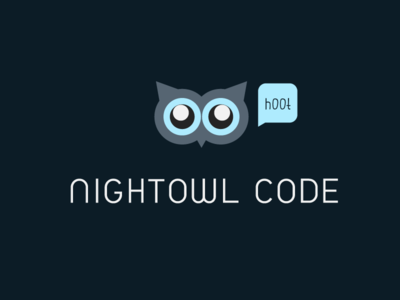 Nightowl Code Logo owl hoot night dark clean flat logo blue
