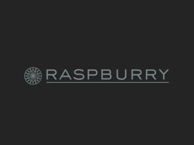 Raspburry Logo circle logo design dark black gem jewel snowflake