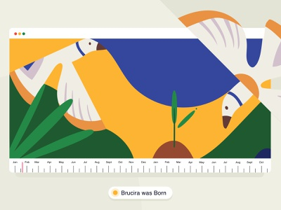 Birth of Brucira ☀️ timeline brucira india graphic website design web design leaf forest birds journey website plant vector web ux design ui illustration