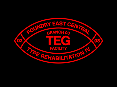 TEG Typeface modern sans serif workhorse type typography hdcfonts typeface font