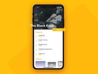 Music App - Artist's Screen