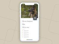 Dog Walk App - Dog's Profile