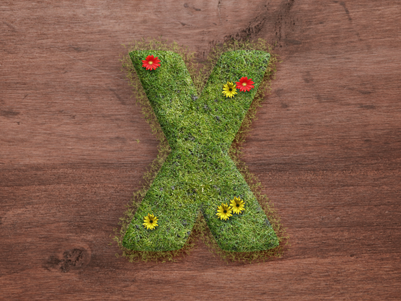 X : 36 Days of Type 🔡 lettering branding vector design logo illustration 36daysoftype typography type alphabets green grass