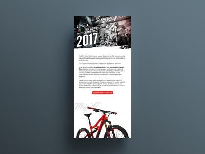 Ibis Cycles Email Design email marketing email design ui branding graphic design adobe