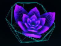 Virtual Plant Delta ///