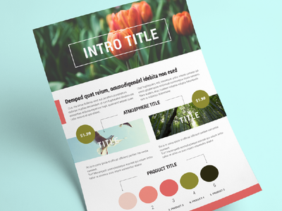 Brochure with 3 themes