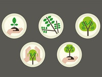 Tree evolution icons