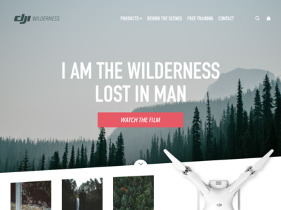 Landing Page cta wilderness forest drone web page home landing ux ui 003 dailyui