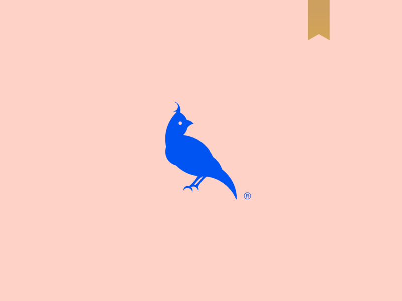 Tríave - Visual Brand bird icon unique goldenratio 1618 minimalism simple minimalist icon photography mark abstract logo brand birds bird logo