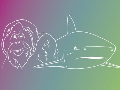 Orangutan and Shark