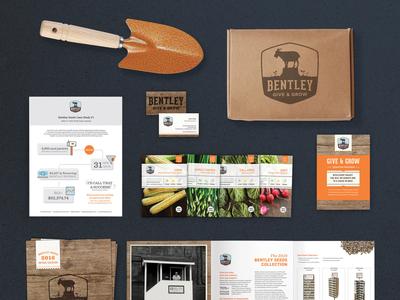 Bentley Seeds Product Rebrand logo branding typography package design design