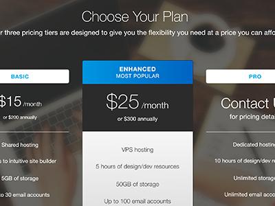 Choose Your Plan Design ui conversion optimization desktop pricing tiers pricing landing page web design