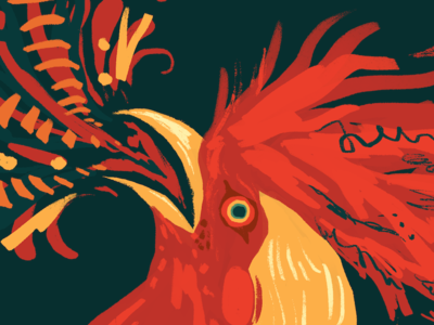Fire Rooster chinese new year bird animal fire illustration rooster