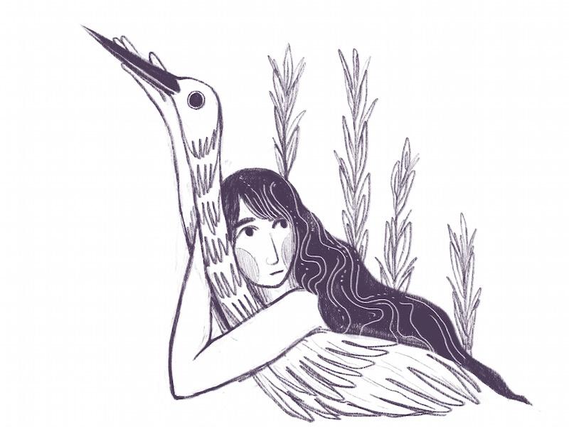 Crane calm plant woman sketchbook bird illustration