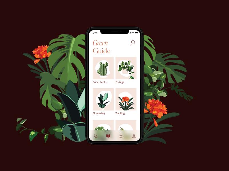 Verde App foliage plants illustration app design ui