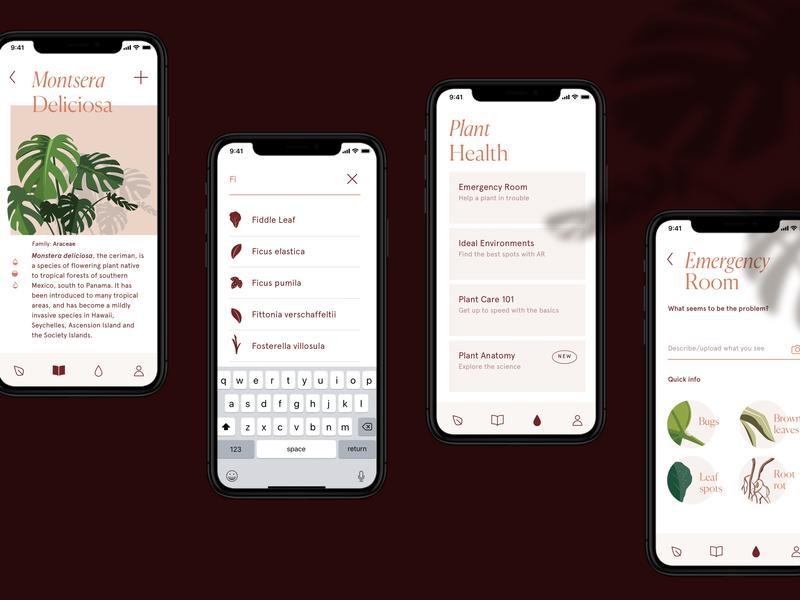 Verde App illustration plants foliage app design minimal ui