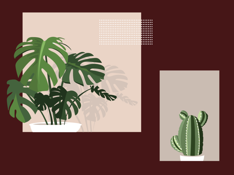 Verde App Illustrations app plants foliage vector illustration