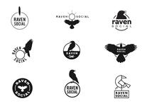 Raven Social Concepts