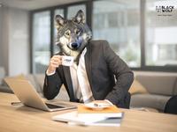 Wolf At Work