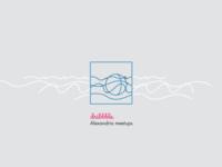 Dribbble Alexandria meetups