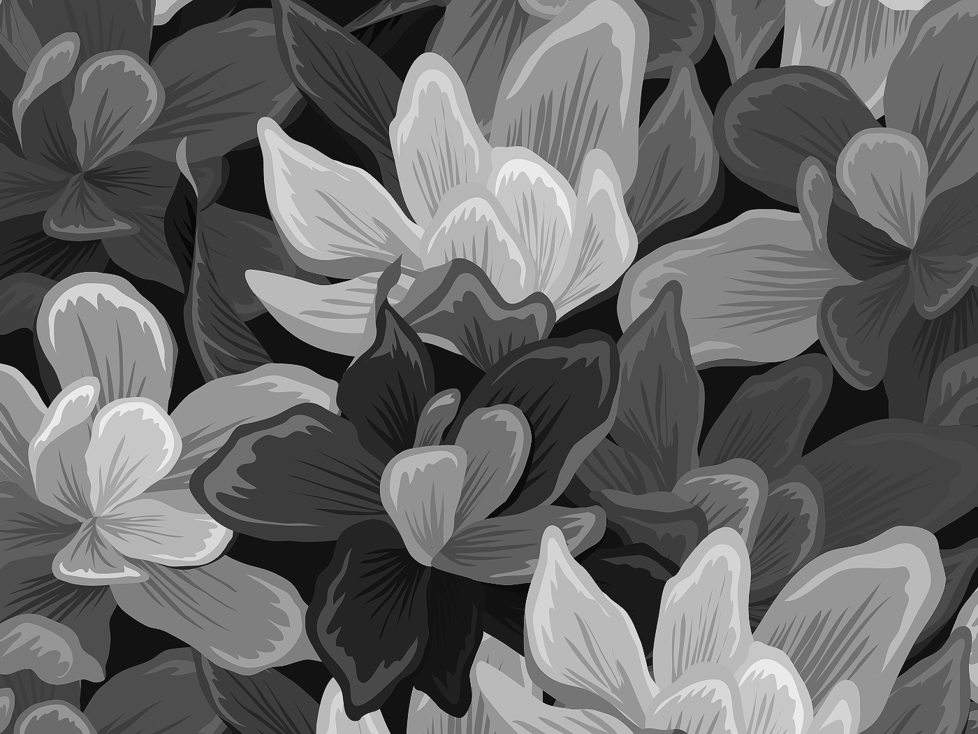Hd 1080p Flower Png Nature Background Www Galleryneed Com
