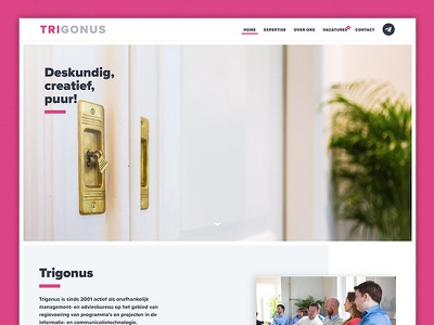 Trigonus consultancy it webdesign