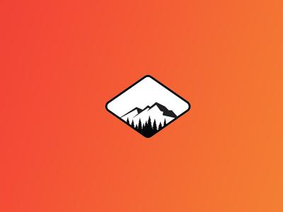 Designer Mount