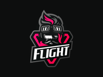 Flight esports illustration logotype sport esport branding mascot caelum logo identity