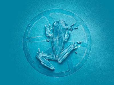 Hello dribbble! frog crystal ice winter design illustration frozen debute dribbble
