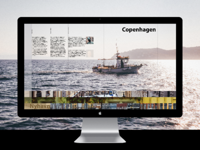 a website about Denmark