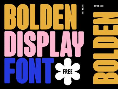 Bolden Display Font *FREE illustration artdirection lettering type typography design