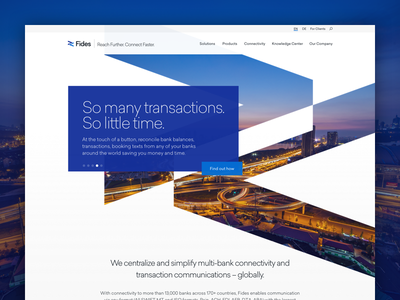 Swiss Banking Tech Website responsive branding corporate blue capital treasury finance bank swiss ux ui web