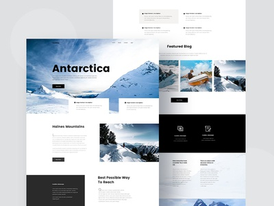 Travel Blog antarctica travel blog