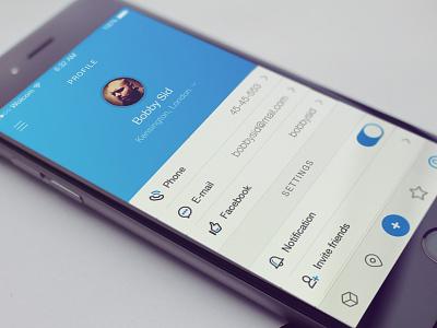 Profile config icons settings profile iphone design ios app interface ui
