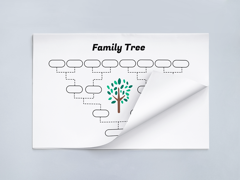 Simple Family Tree Template school print genealogy printable family tree vector family tree template