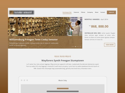 Website Design - Landing Page website design flat minimal clean brown white grey landing
