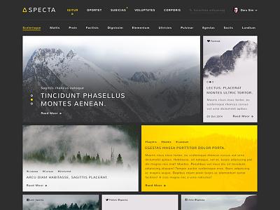 Specta - Website specta website webdesign black dark yellow gold darusim grid