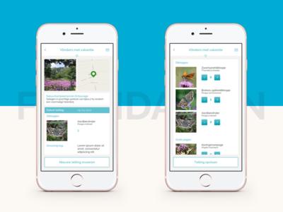 Butterfly Foundation Smartphone App website webapp ux ui design app