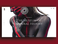 Museum Of Natural History Header Concept