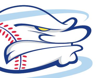 Charlotte Hurricanes Logomark  logo illustration graphic design design type typography letters letterform script baseball sports logotype