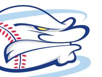 Charlotte Hurricanes Logomark