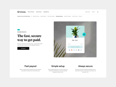 GoDaddy Payments graphic design web animation motion lottie interface website ux payments page