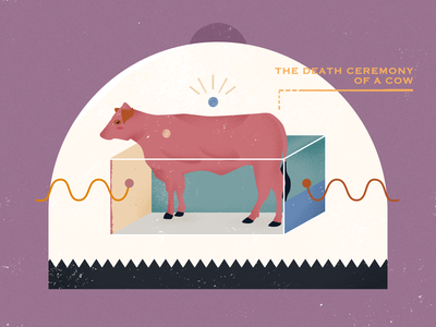 The death ceremony of a cow color purple cow design flat illustration